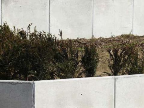 Tuin met betonpanelen