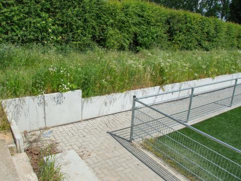Sportinfrabouw Anderlecht murs de soutènement beton CBS 6